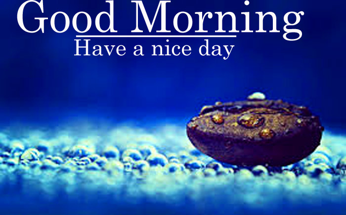 Good Morning have a nice day nature image