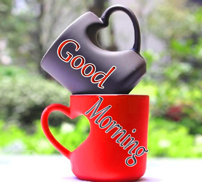 Good Morning red and blank cup image