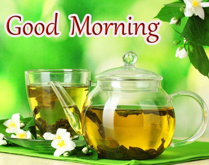 Good Morning withe a jasmine flower pic