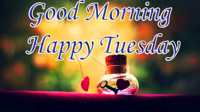 Good morning and happy Tuesday wishes with love flowers