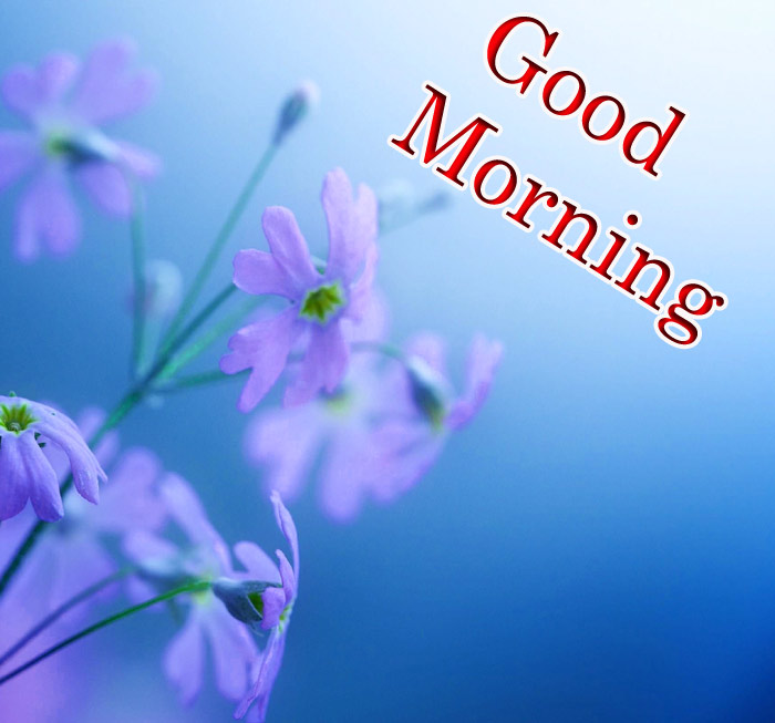 Good morning images with a flowers in blue