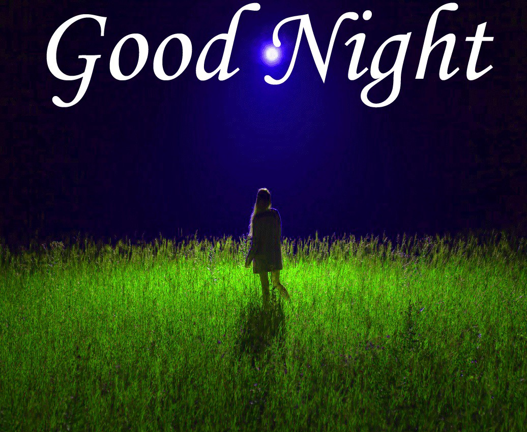 Image of Good night image of nature field with grass