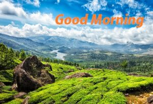 good morning image with beautiful nature background