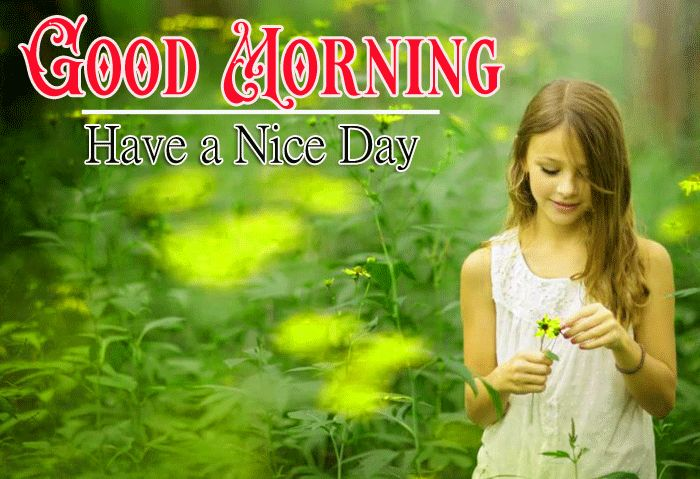 good morning have a nice day