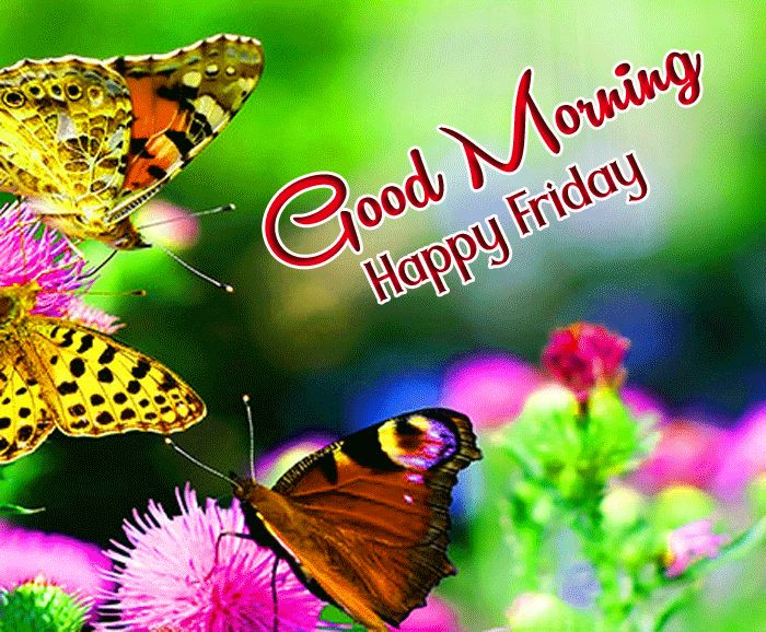friday blessings good morning images