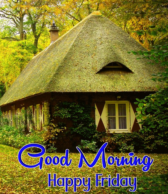 good morning have a nice friday images