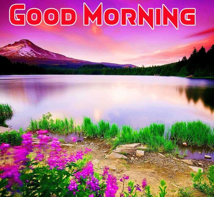 good morning with nature image