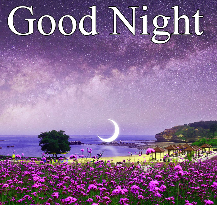 Good Night moon starry sky images hd