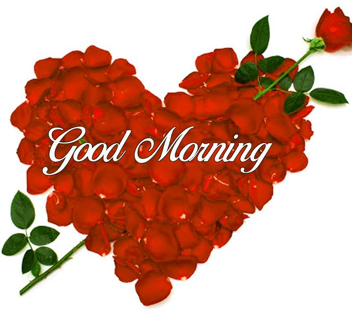 best heart and flower pics with Good Morning