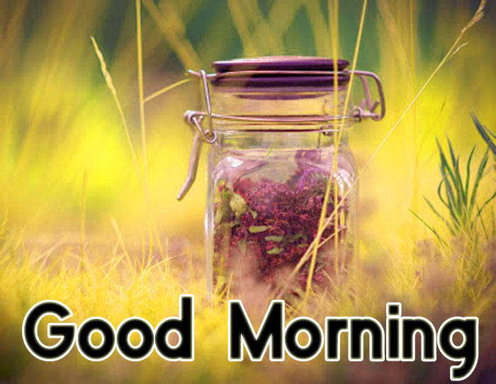 cute Good Morning pics hd