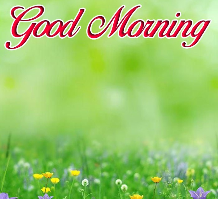 latest Good Morning green images