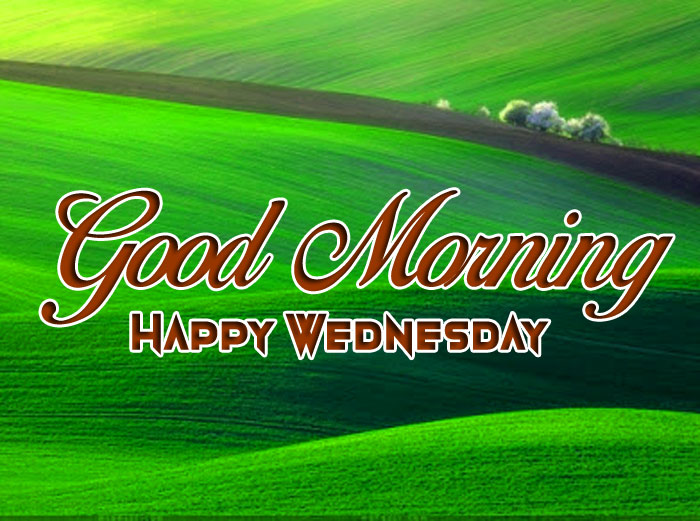 Good Morning Happy Wednesday green nature images hd