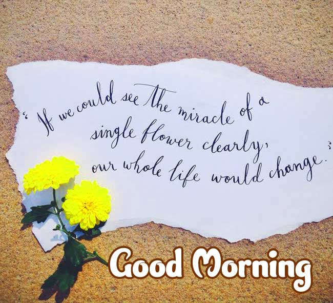 Magical Good Morning Wishing with Flower