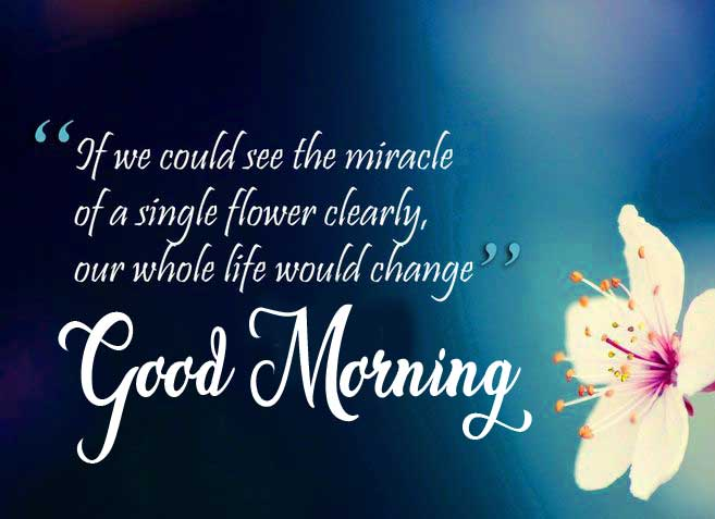 Pale Yellow Flower with Good Morning Message