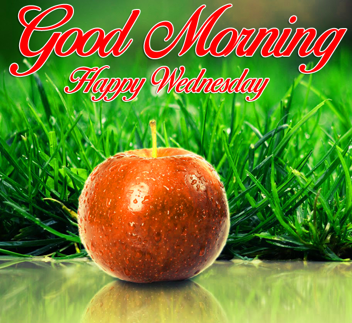 apple Good Morning Happy Wednesday images hd