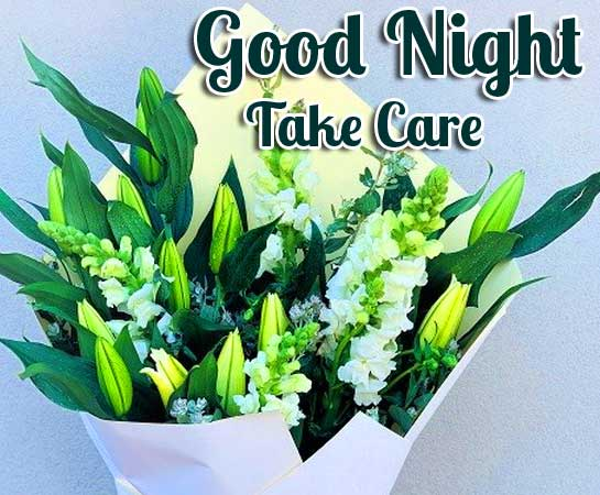Adorable Flower with Good Night Wshing