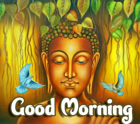 Amazing Buddha Good Morning Image HD
