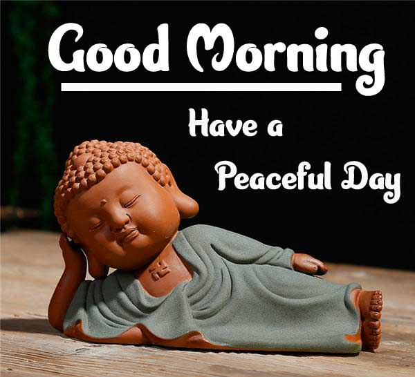 Amazing Buddha with Good Morning Image HD
