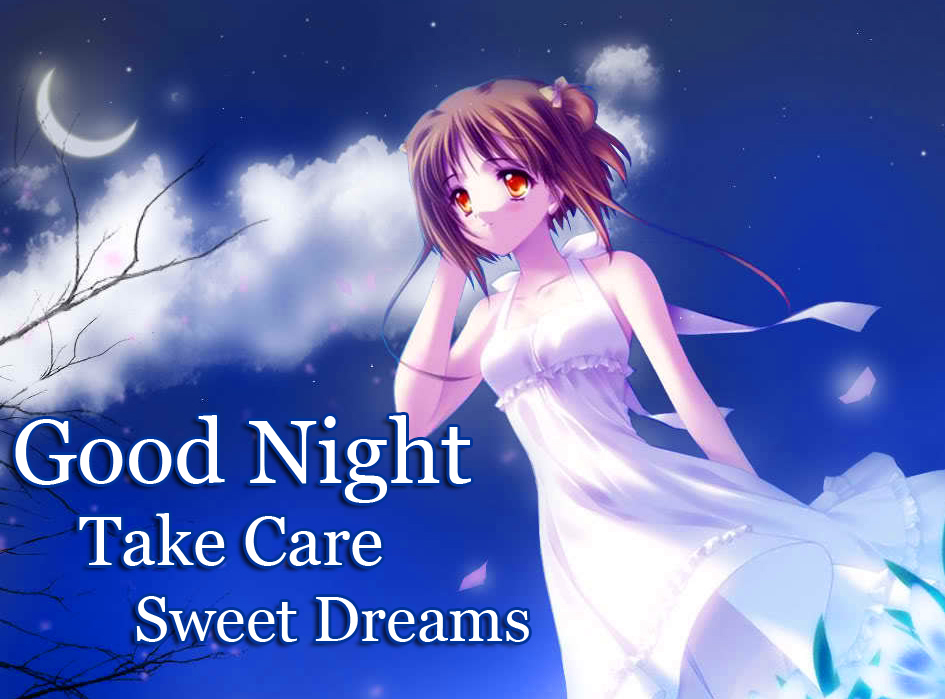 Beautiful Anime Good Night Wishing Image HD Copy