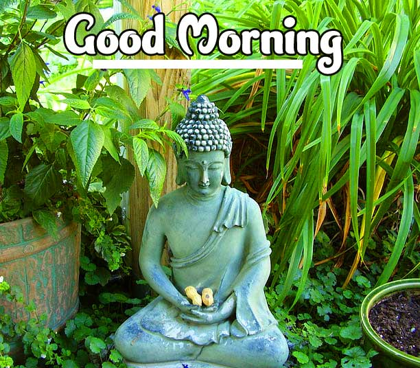 Beautiful Buddha Good Morning with Peaceful Day Message