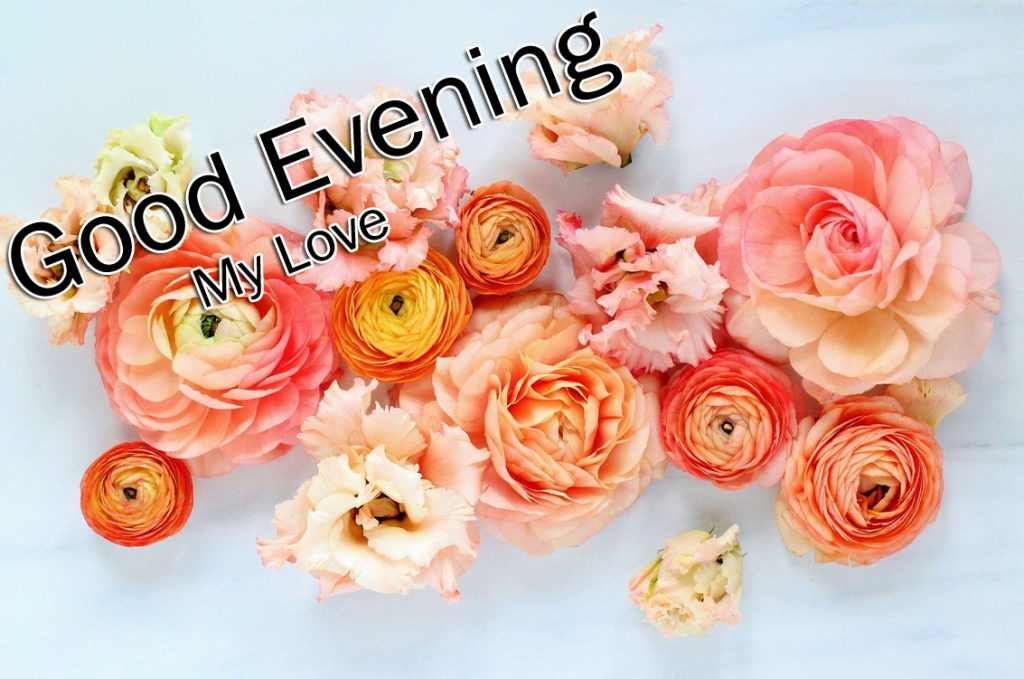 92+ Romantic Good Evening Images (Latest Collection)