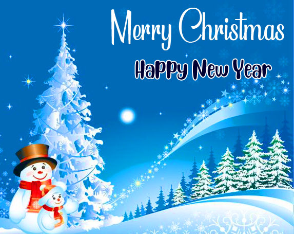 Beautiful Merry Christmas and Happy New Year Picture
