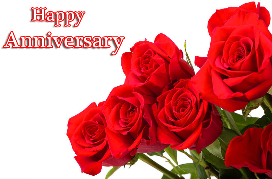 Beautiful Roses with Happpy Anniversary Wishing