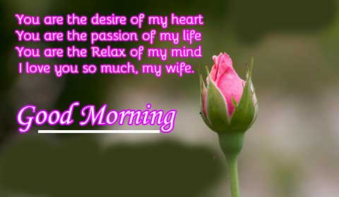 Best Good Morning Wishing for Wife Copy Copy