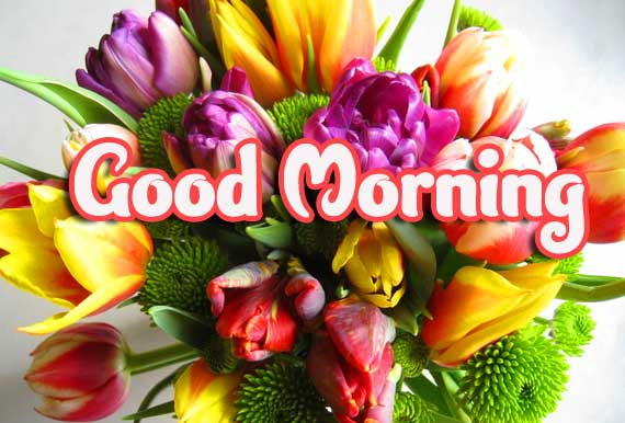 Bouquet Good Morning Pic