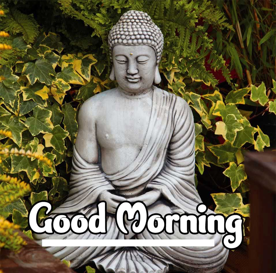 Buddha Good Morning Wishing Wallpaper HD