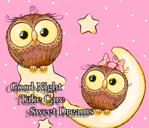 Cartoon Owls with Good Night Wishing