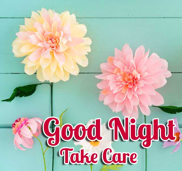 Colourful Paper Flowers with Good Night Wishing Copy