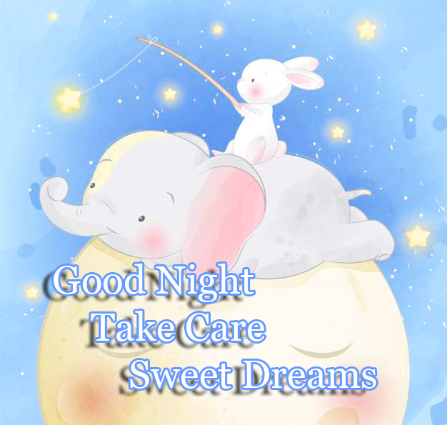 Cute Baby Elephant with Good Night Wishing