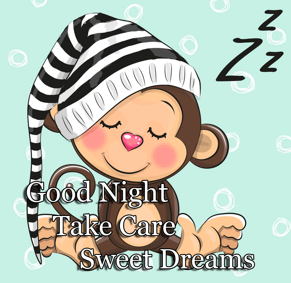 Cute Monkey with Good Night Wishing