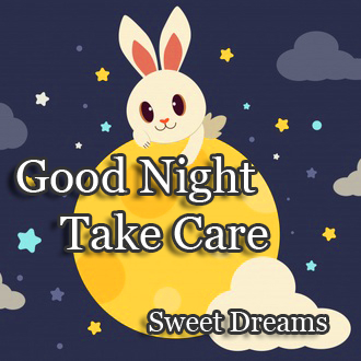 Cute Rabbit Good Night Image