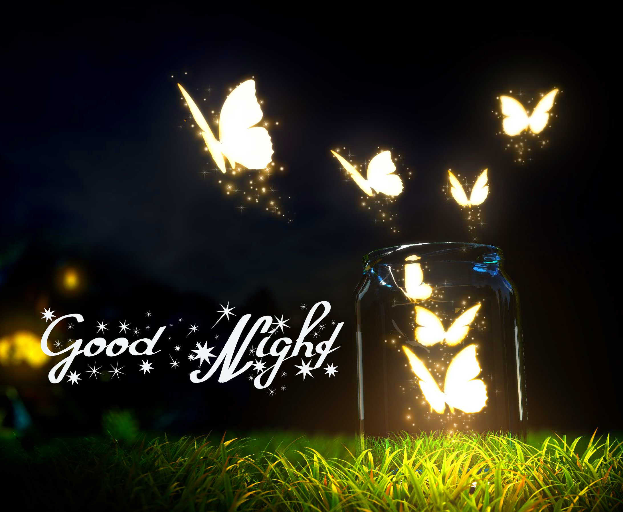 Dazzling Butterflies with Good Night Wish