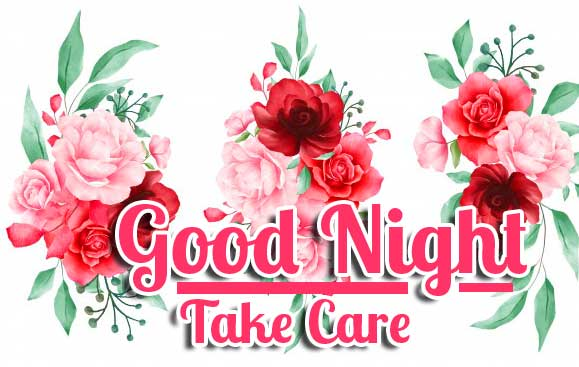 Floral Background Good Night Image