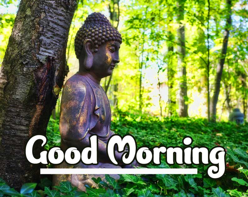 Gautam Buddha with Good Morning Wishing Photo HD