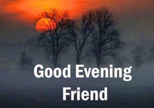 Good Evening Friend Wallpaper