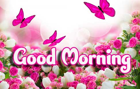 Good Morning Wishes with Butterflies