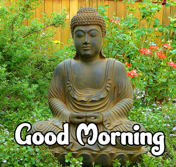 Good Morning Wishing on Buddha Image