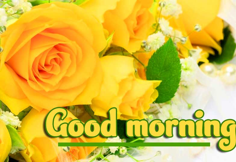 Good Morning Wishing with Yellow Flowers