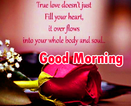 Good Morning with True Love Quote