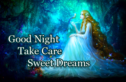 Good Night Wishing Image