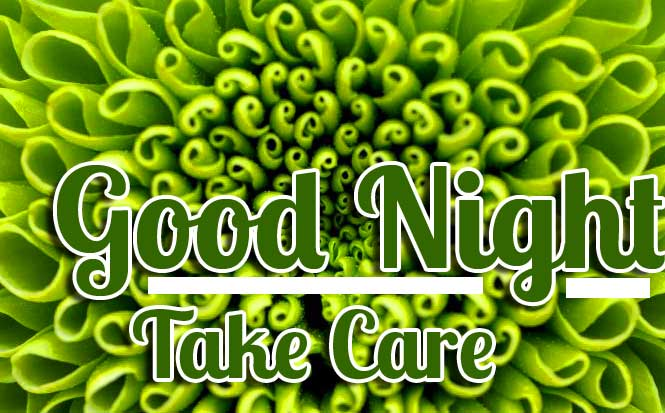 Green Flowers with Good Night Greeting