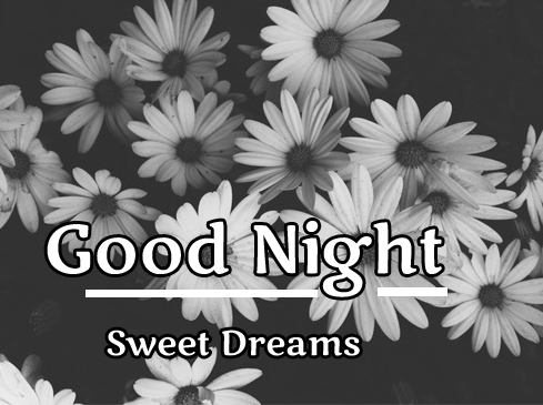 Grey and White Flower with Good Night Wishing
