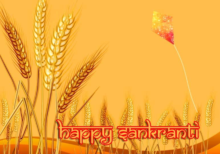 Happy Sankranti with Crop Pic