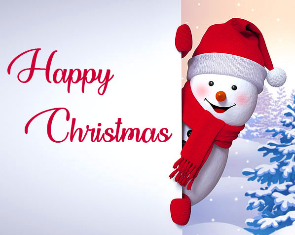 Happy Snowman with Happy Christmas Wish