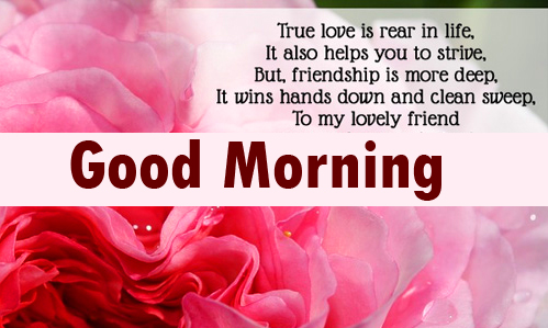Love Quote for Lover with Good Morning Wishing