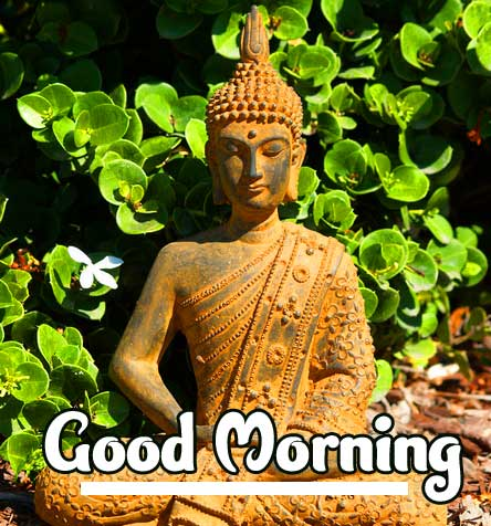 Lovely Buddha Good Morning Pic HD